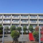 シェレーヌ(1L) 徳島市南矢三町 賃貸アパート